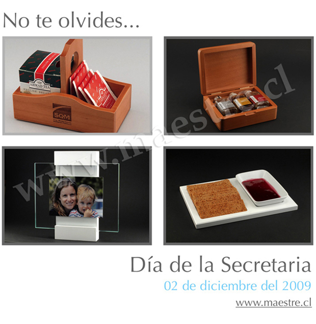 dia_de_la_secretaria_2009.jpg